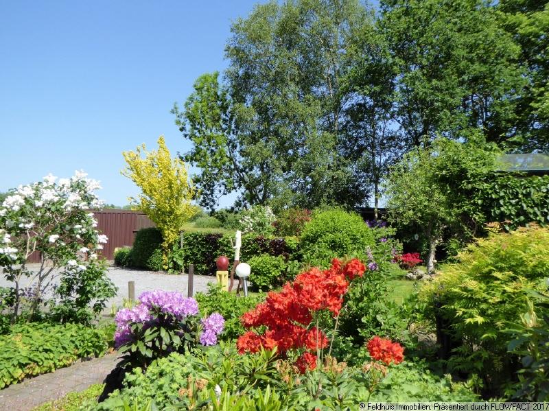 Garten I im Frühjahr 2020