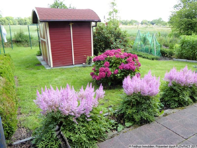 Garten II im Frühjahr 2020