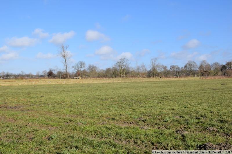 freier Blick auf Wiesen und Felder